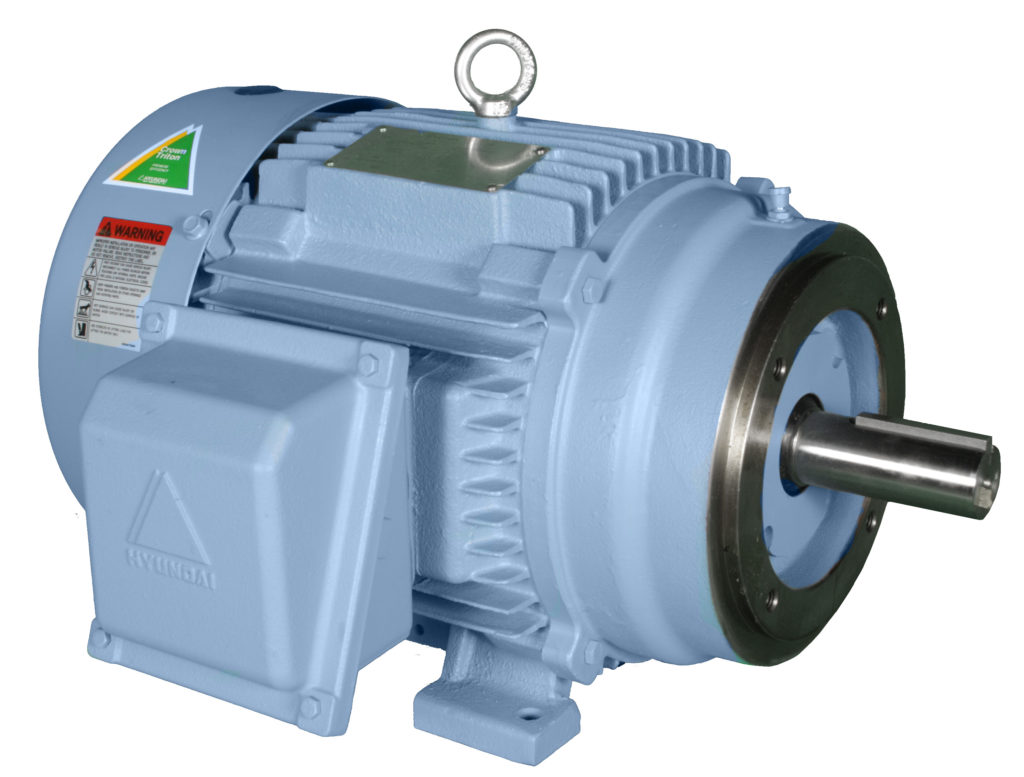 Hyundai 5hp 3 Phase TEFC Dual Volt Electric Motor